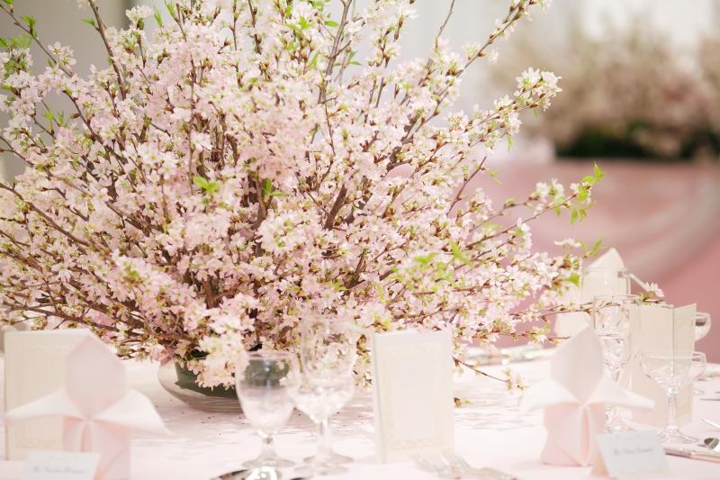 春の歓送迎会プラン